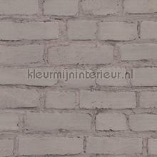 KMI206 papel de parede Kleurmijninterieur quadrado
