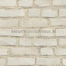KMI209 papel de parede Kleurmijninterieur quadrado