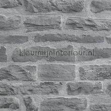 KMI212 papel de parede Kleurmijninterieur quadrado