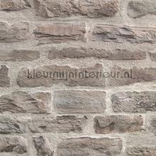 KMI213 papel de parede Kleurmijninterieur quadrado