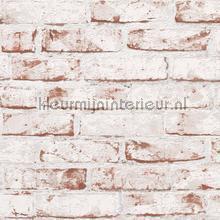 KMI215 papel de parede Kleurmijninterieur quadrado