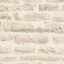 KMI218 papel de parede Kleurmijninterieur quadrado