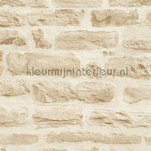 KMI219 papel de parede Kleurmijninterieur quadrado