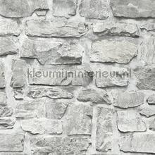 KMI220 papel de parede Kleurmijninterieur quadrado