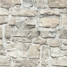 Kmi222 papel de parede Kleurmijninterieur quadrado