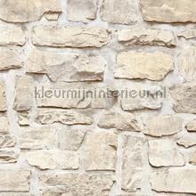 Kmi223 papel de parede Kleurmijninterieur quadrado