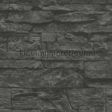 Kmi237 papel de parede Kleurmijninterieur quadrado