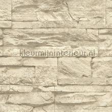 Kmi238 papel de parede Kleurmijninterieur quadrado