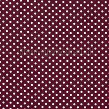 110302 curtains Kleurmijninterieur all-images