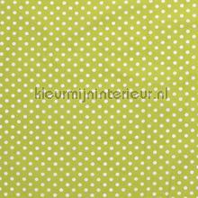 110304 curtains Kleurmijninterieur all-images