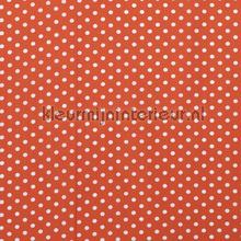 110309 curtains Kleurmijninterieur all-images