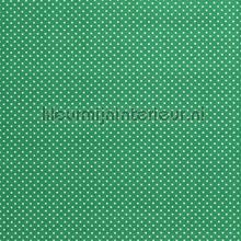 110332 rideau Kleurmijninterieur garçons