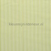 Fijne strepen 5mm limegroen rideau Kleurmijninterieur stress