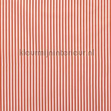 Fijne strepen 5mm oranje rideau Kleurmijninterieur stress
