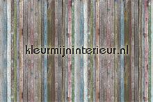 colorful wall boards fotowand papier murales AS Creation Xxl wallpaper 036711
