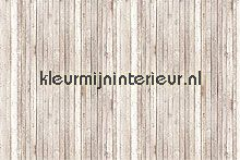 wall boards light brown fotowand papier murales AS Creation Xxl wallpaper 036721