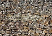 Stone wall fotobehang Komar Trendy Hip