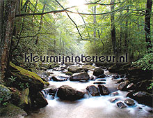 mountain river fotobehang Noordwand Evolutions II 1177