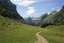 switzerland fotobehang Noordwand Evolutions II 1189