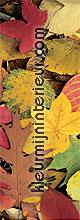 Autumn leaves small OPRUIMING fotobehang Eijffinger behang
