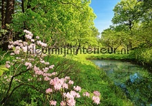 Park in the Spring fotobehang Ideal Decor Ideal-Decor Poster 00136