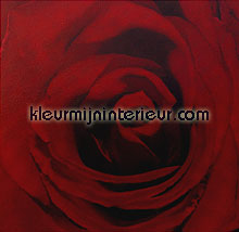 red rose photomural  all-images