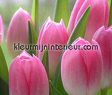 tulpen fotobehang Dutch Wallcoverings Digiwalls 70031
