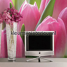 tulpen small fotobehang 70010 Digiwalls Dutch Wallcoverings