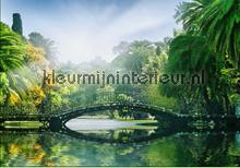 Bridge in the Sunlight fotobehang Ideal Decor Ideal-Decor Poster 00132