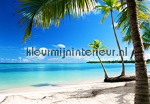 Caribbean Sea fotobehang Ideal Decor Zon Zee Strand