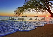 Pacific Sunrise fotobehang Ideal Decor Ideal-Decor Vlies 00955