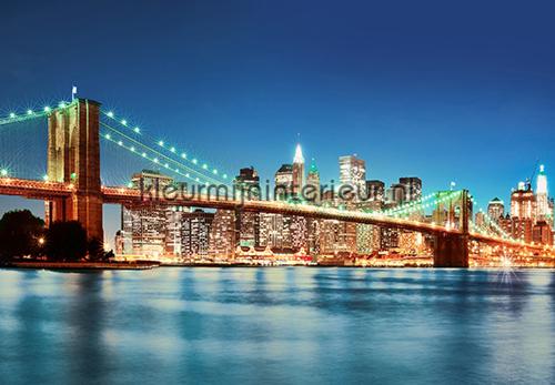 New York East River papier murales 00961 offre Ideal Decor