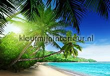 Zon - Zee - Strand fotobehang