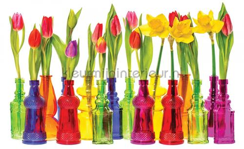 Vases with tulips fotobehang 2143-VE-L Interieurvoorbeelden fotobehang Kleurmijninterieur