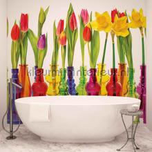 Vases with tulips fotobehang Kleurmijninterieur Bloemen---Planten