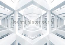 Skeleton construction fotobehang Kleurmijninterieur Grafisch---Abstract
