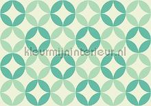 Mint graphic leafs fotobehang Kleurmijninterieur Grafisch Abstract