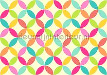 Colorful graphic leafs fotobehang Kleurmijninterieur Modern Abstract
