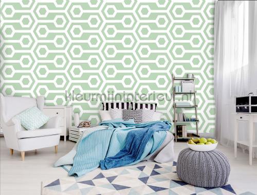 Kleur Mijn Interieur : Hoe bepaal ik de kleuren voor mijn woonkamer makeover