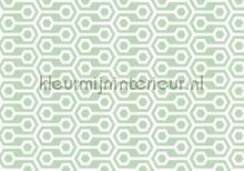 Abstract play mint fotobehang Kleurmijninterieur Grafisch---Abstract