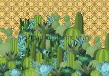 Cactus wereld fotobehang Kleurmijninterieur Grafisch Abstract