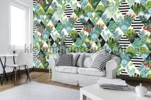 Cactus kameleon and sqaures photomural Kleurmijninterieur Mural room set photo's