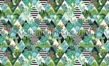 Cactus kameleon and sqaures fotobehang Kleurmijninterieur Grafisch---Abstract