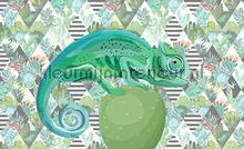 Kameleon and graphics fotobehang Kleurmijninterieur Abstract and Art 11144-VE-M