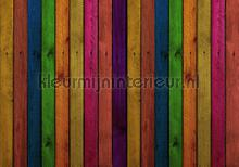Wood wall in bright colors photomural Kleurmijninterieur all-images