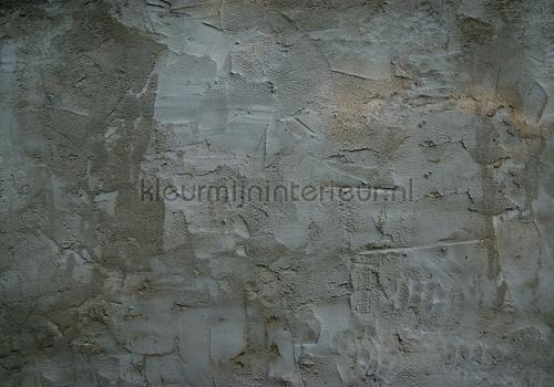 Concrete wall fotobehang Abstract and Art Kleurmijninterieur ...