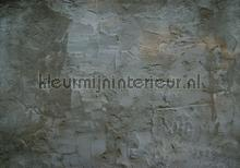 Concrete wall fotobehang Kleurmijninterieur Modern Abstract