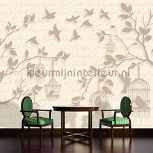 Free birds fotobehang Kleurmijninterieur Modern Abstract