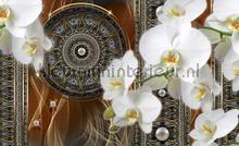 Abstraction brown orchidee fotobehang Kleurmijninterieur Modern---Abstract
