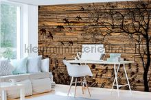Nature on wooden background fotobehang Kleurmijninterieur Modern---Abstract